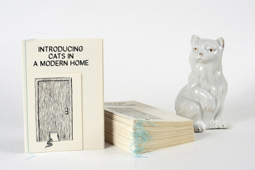 Introducing Cats In a Modern Home