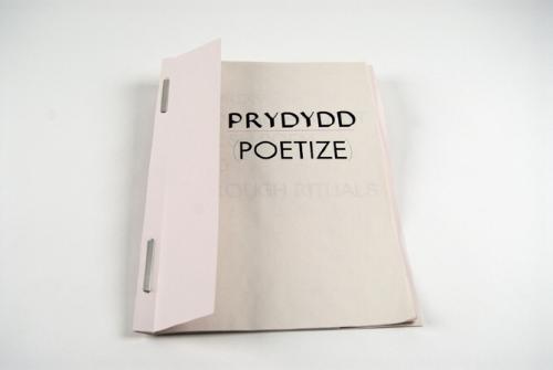 PRYDYDD (POETIZE)