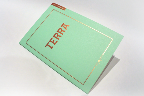 Jerwood Visual Arts: Terra