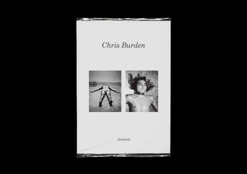 Chris Burden - Analysis