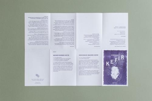 Kefir Handout