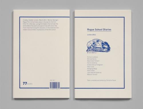 Rogue School Diaries