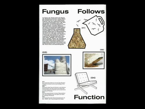 Fungus Follows Function