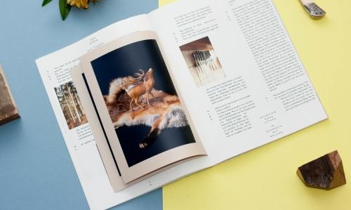 honig magazine