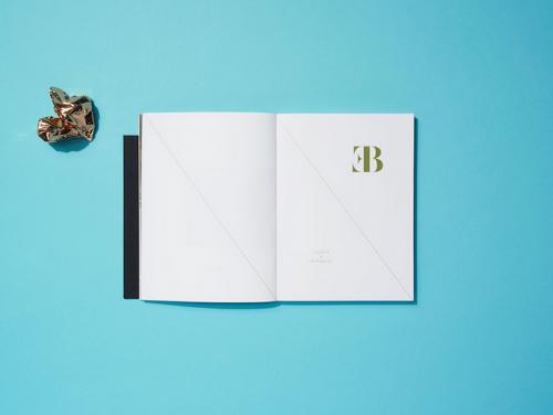 Roda Catalog 2015