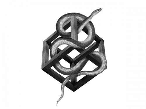 Illusive snakes