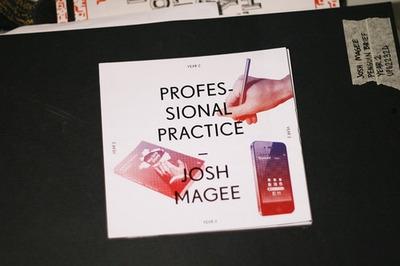 PROFESSIONAL PRACTISE