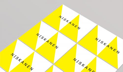 Tahvo Niskanen- visual identity