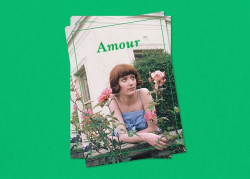 Accidental Discharge, Amour, 2016