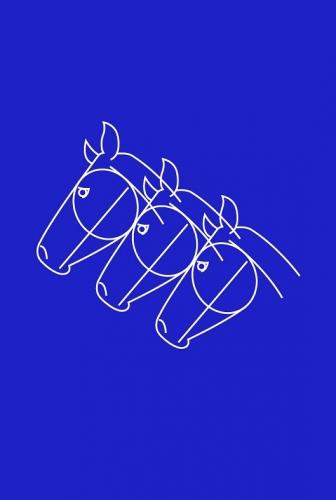 Saddle room