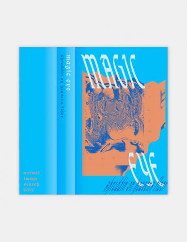MAGIC EYE - SHREDDIN ON HEAVENS FLOOR